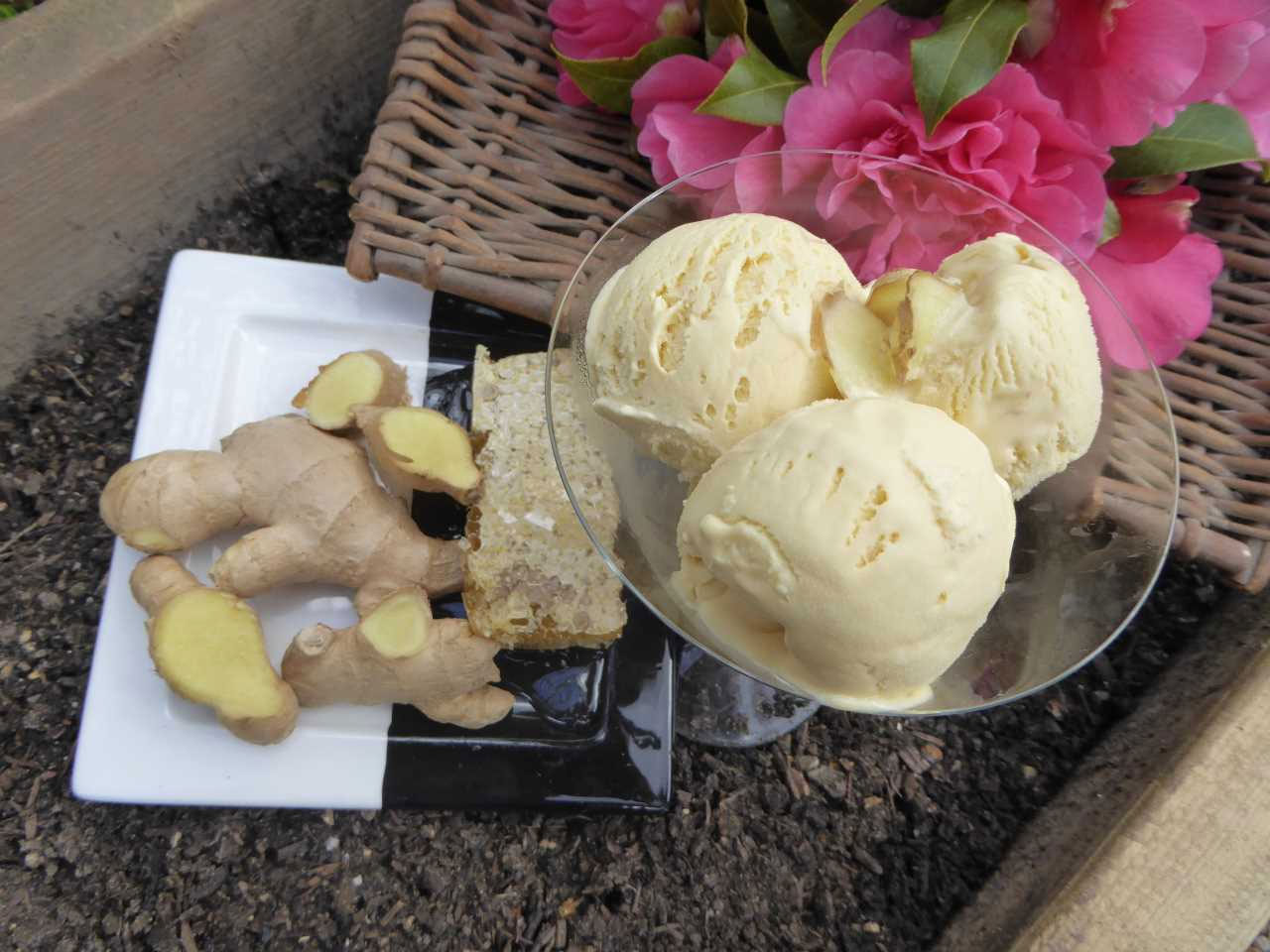 Ginger and Honey Ice Cream